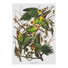 Cubic-Birds-Toalla-de-Te-Loros
